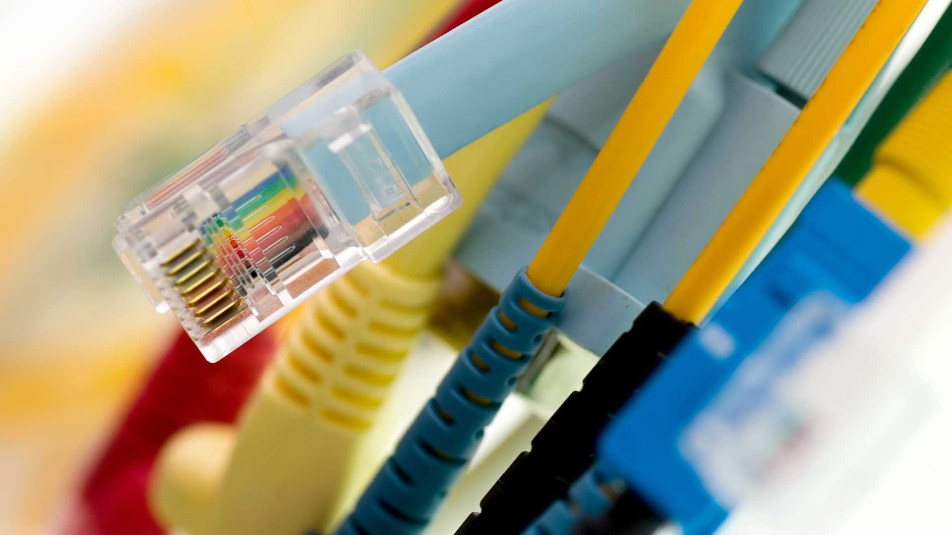 Black Box Network Services Internet Wiring High Performance Cables